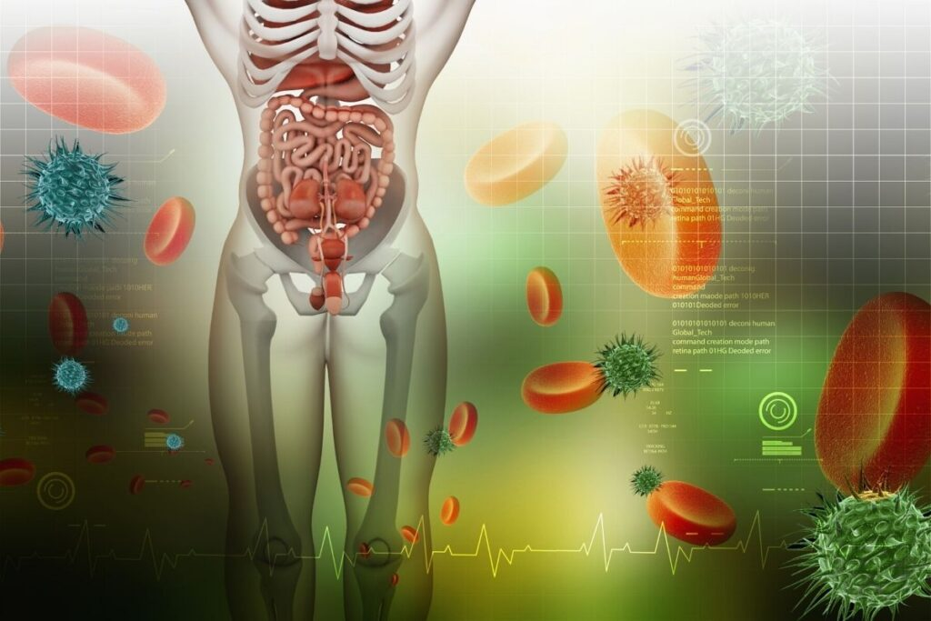 how does IBS affect the digestive system 1