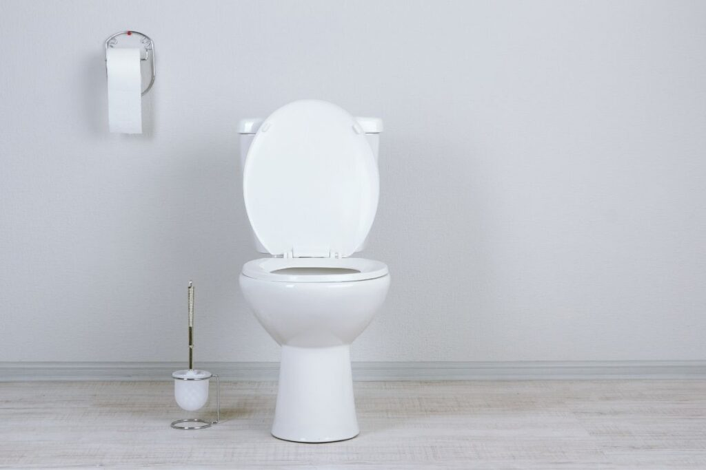 IBS stool colour 2